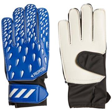 adidas TorwarthandschuhePREDATOR TRAINING TORWARTHANDSCHUHE - GK3546 blau