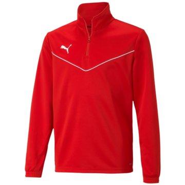 Puma SweatshirtsTEAMRISE 1/4 ZIP TOP JR - 657395 rot