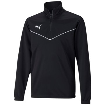 Puma SweatshirtsTEAMRISE 1/4 ZIP TOP JR - 657395 schwarz