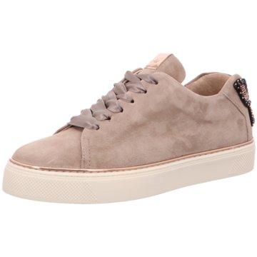Alpe Woman Shoes Sneaker Low beige
