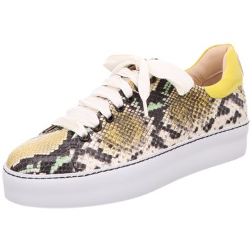Camerlengo Sneaker animal