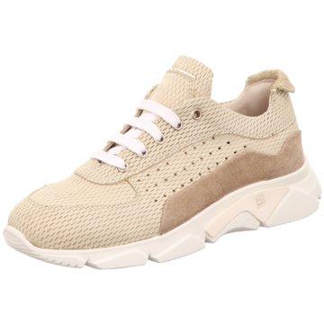 Moma Sneaker beige