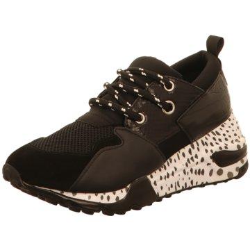 Steve Madden Sneaker Low schwarz