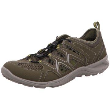 9d477bfd97e5a7 Ecco Outdoor Schuhe für Herren günstig online kaufen