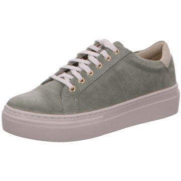 Vagabond Sneaker Low grün