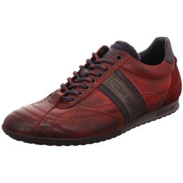 Cycleur de Luxe Sneaker Low rot