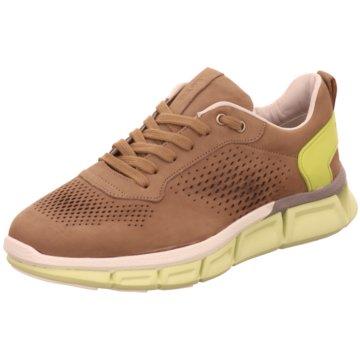 Lloyd Sneaker Low beige
