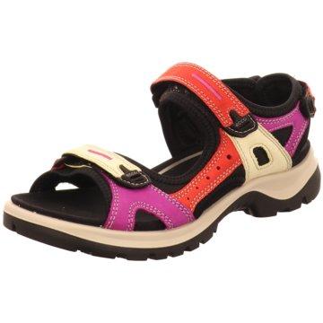 Ecco Outdoor Schuh bunt