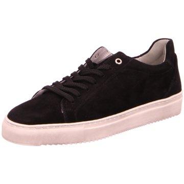Sioux Sneaker Low schwarz