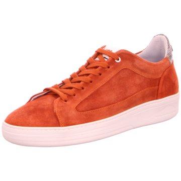 Floris van Bommel Street Look orange