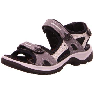 Ecco Outdoor SchuhOffroad -