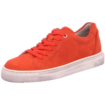 Sioux Sneaker Low rot