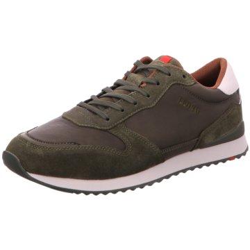 Lloyd Sneaker Low grün