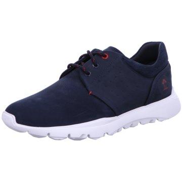 Panama Jack Sneaker Low blau