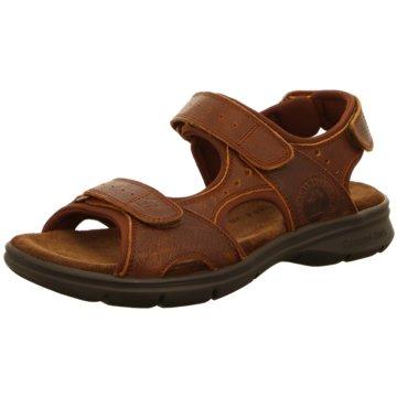 41c35be0a87508 Sandalen für Herren jetzt im Online Shop günstig kaufen