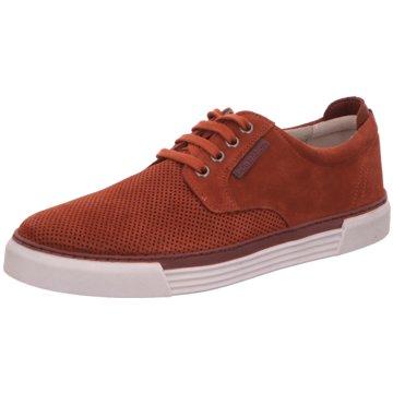 Pius Gabor Sneaker Low braun