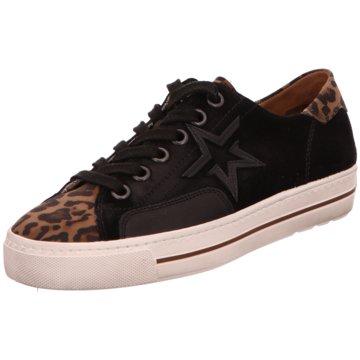 16c4a1e14263a Paul Green Sneaker für Damen jetzt online kaufen | schuhe.de