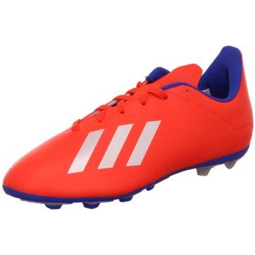 adidas FußballschuhX 18.4 FxG Fußballschuh - BB9379 rot