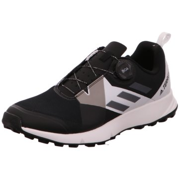 adidas Outdoor SchuhTerrex Two Boa schwarz