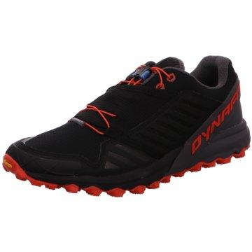 Dynafit TrailrunningAlpine Pro schwarz