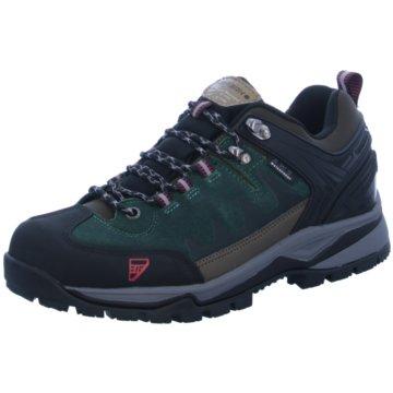 Icepeak Outdoor Schuh grün