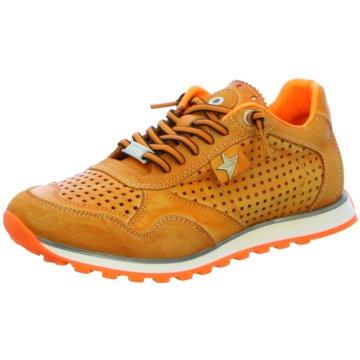 Cetti Sneaker LowSneaker orange
