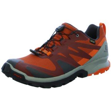 Salomon TrailrunningSchuhe XA ROGG GTX Burnt Bric/PHANT orange