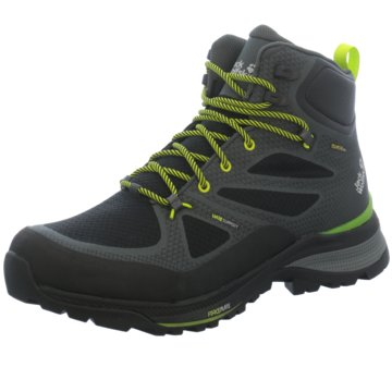 JACK WOLFSKIN Outdoor SchuhFORCE STRIKER TEXAPORE MID M - 4038821 grau