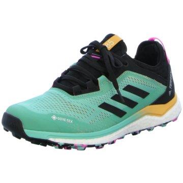 adidas Trailrunning grün
