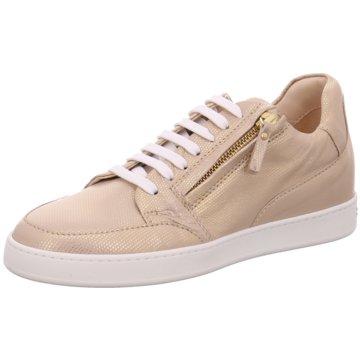 Schuhe online kaufen peter kaiser