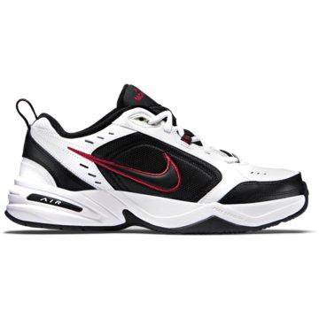 Nike HallenschuheAIR MONARCH IV - 415445-101 weiß