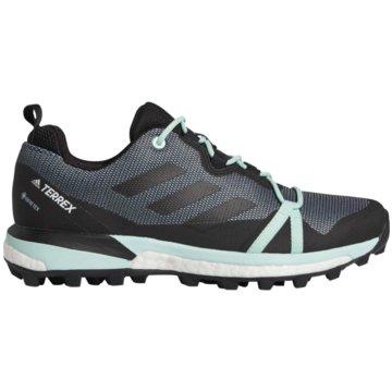 adidas TrailrunningTerrex Skychaser LT GTX schwarz