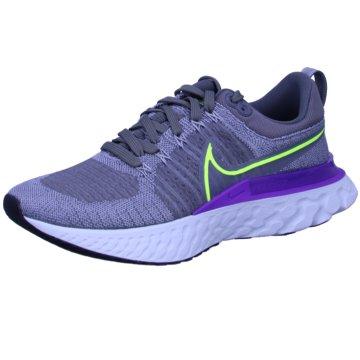 Nike RunningREACT INFINITY RUN FLYKNIT 2 - CT2357-004 grau