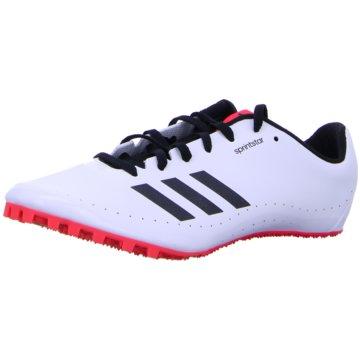 adidas SpikesSprintstar Spike-Schuh - B37503 weiß