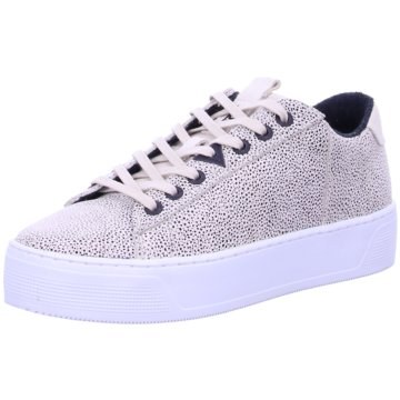 Hub Top Trends Sneaker gold