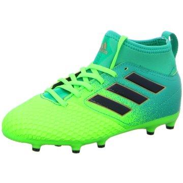 adidas FußballschuhACE 17.3 FG Kinder Fußballschuhe Nocken grün grün