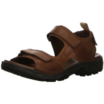 Ecco Outdoor Schuh braun
