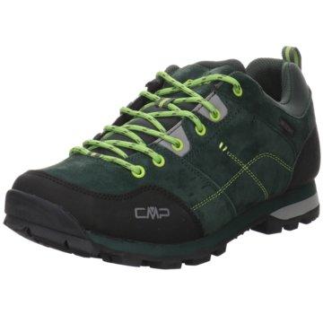 CMP Outdoor SchuhALCOR LOW TREKKING SHOE WP - 39Q4897 grün
