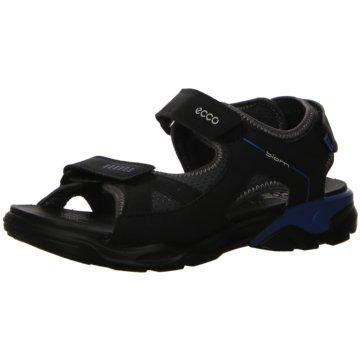 Ecco Outdoor Schuh schwarz