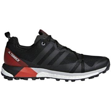 adidas TrailrunningTerrex Agravic Boost schwarz