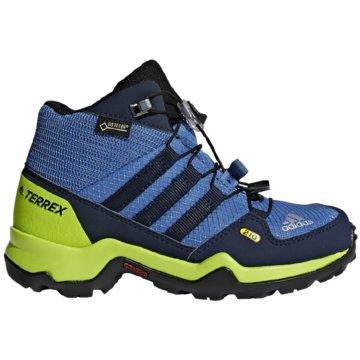 adidas Wander- & BergschuhTerrex Mid GTX Kinder blau