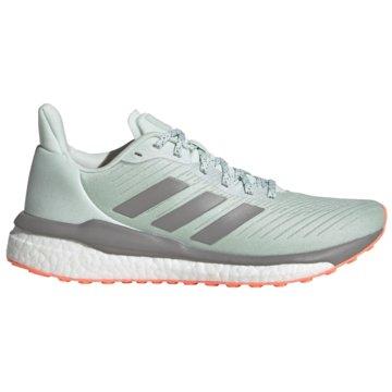 adidas RunningSOLAR DRIVE 19 W -
