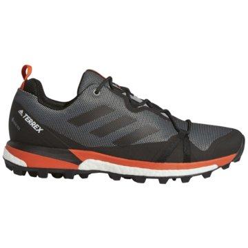 adidas TrailrunningTerrex Skychaser LT Boost GTX grau
