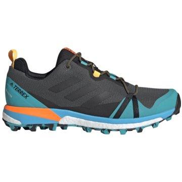 adidas Outdoor SchuhTerrex Skychaser LT Boost GTX -