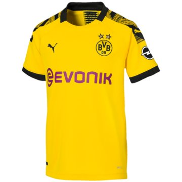 Puma Fan-TrikotsBVB Home Shirt Replica Jr gelb