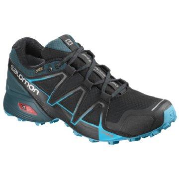 Salomon TrailrunningSpeedcross Vario 2 GTX schwarz