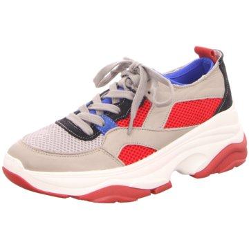 Tango Sneaker Low -