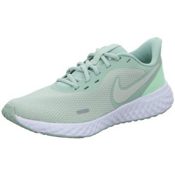 Nike RunningNike Revolution 5 - BQ3207-300 grün