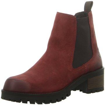 Black Chelsea Boot rot
