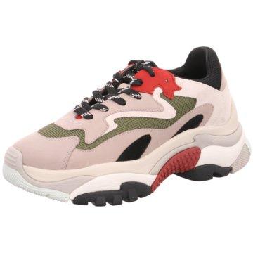 Ash Top Trends Sneaker grau